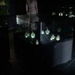 BMuseum08