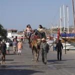 Bodrum Kamel 3